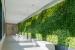 Extel-Green-Wall-1