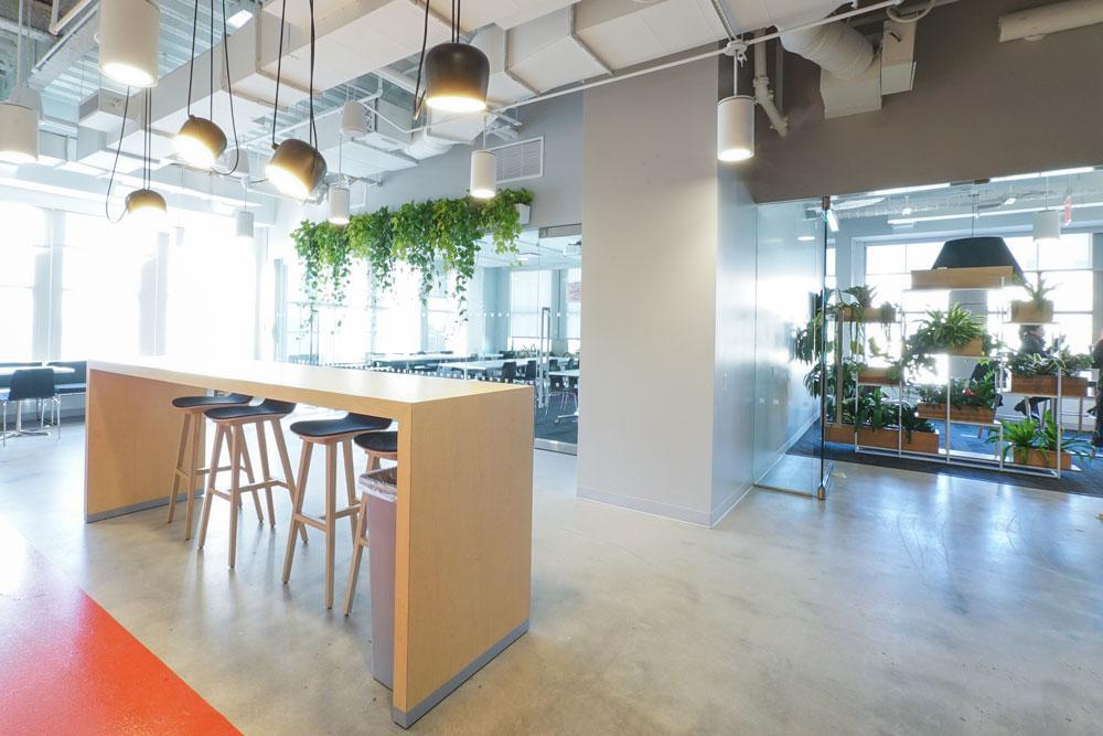 Ted_Talks_Office_Plants_6