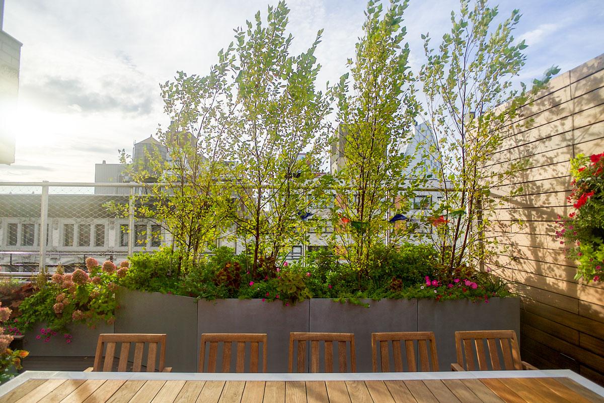 Union-Square-Terrace-1