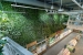 Innisfree-Green-Wall-3