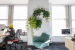 Ted_Talks_Office_Plants_32
