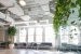 Ted_Talks_Office_Plants_76