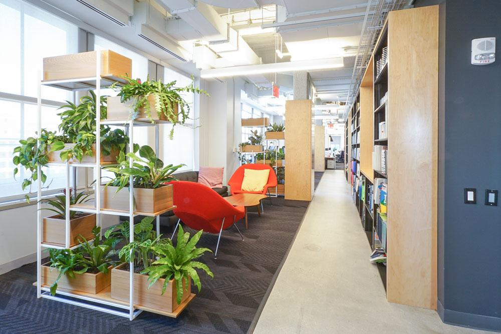 Ted_Talks_Office_Plants_8