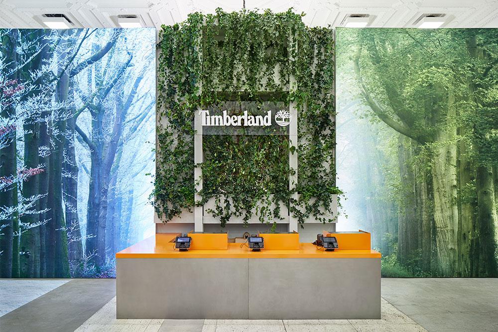 Timberland-4
