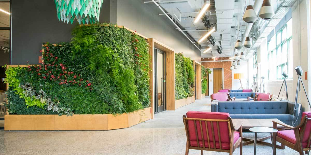 A Green Wall at Etsy HQ