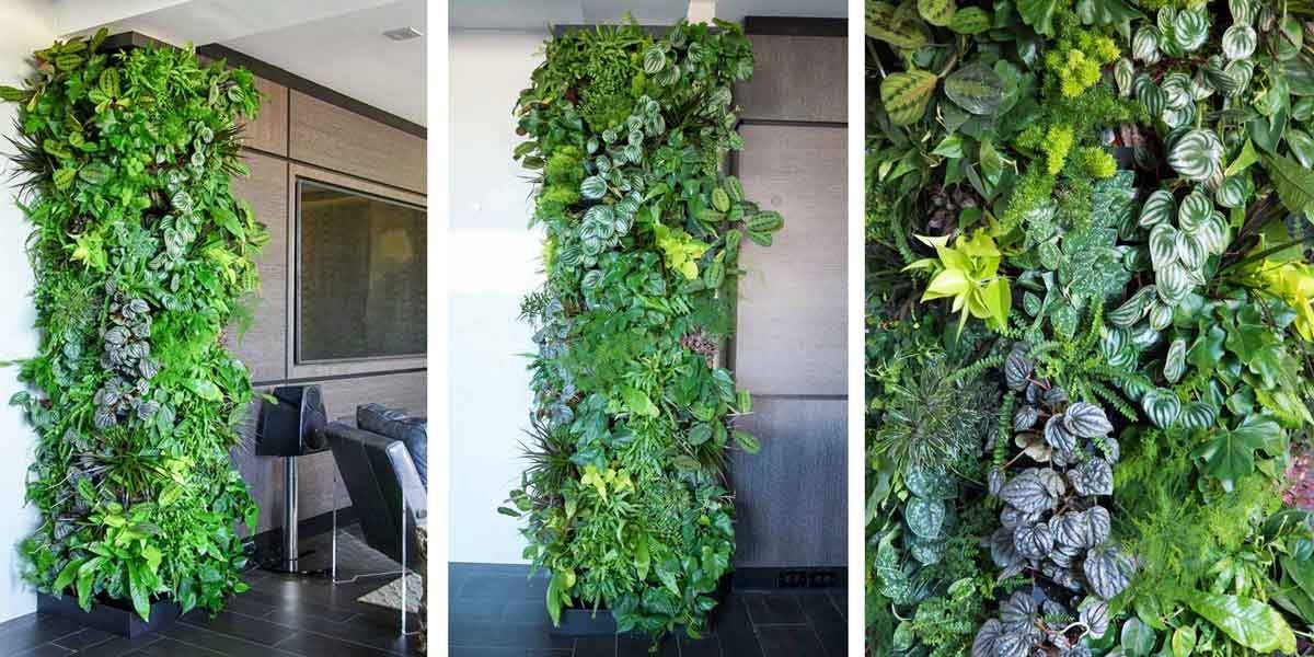 Living Wall at a Private Residence in NYC